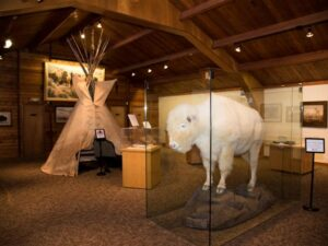 The National Buffalo Museum and bison herd