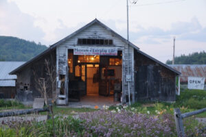 The Museum of Everyday Life